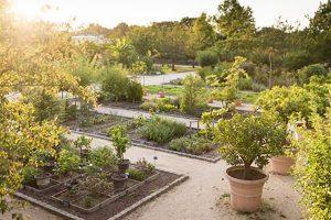 Jardin-Botanique-Yves-Rocher
