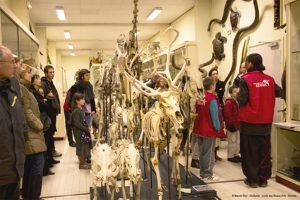 Universite-Rennes1-Commission-de-la-culture-scientifique