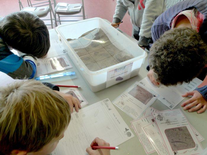 Bac fouilles (2)